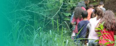 Formação para professores em educação ambiental